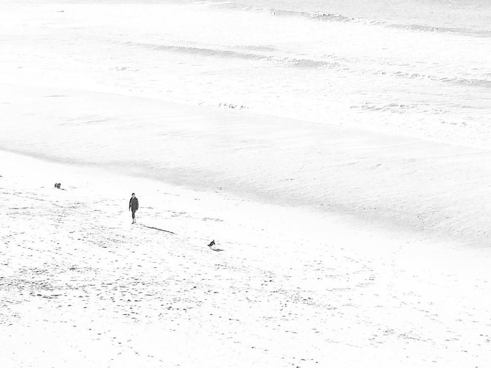 Snow Winter Cold Temperature Real People Sand Lifestyles Shadow Leisure Activity Nature Beach Day Outdoors Vacations One Person Tire Track Landscape Beauty In Nature Paw Print Blancoynegro Black And White Photography Blackandwhite Black&white Minimal Minimalist Minimalism