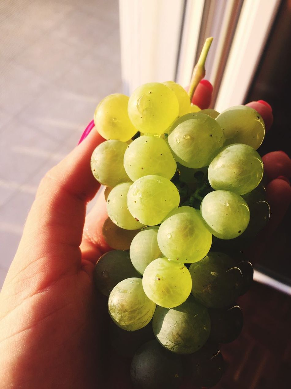 Close-up Human Hand Unrecognizable Person One Person Fruit Real People Holding Human Body Part Freshness Food Food And Drink Healthy Eating Grape Indoors  Day Grapes Green Summer Food Round Perfect Shape No People Fruity Enjoying Life