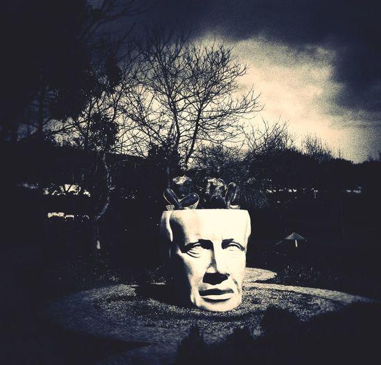 Brain Storm Blackandwhite Statue The Thinker Blackandwite Blancoynegro