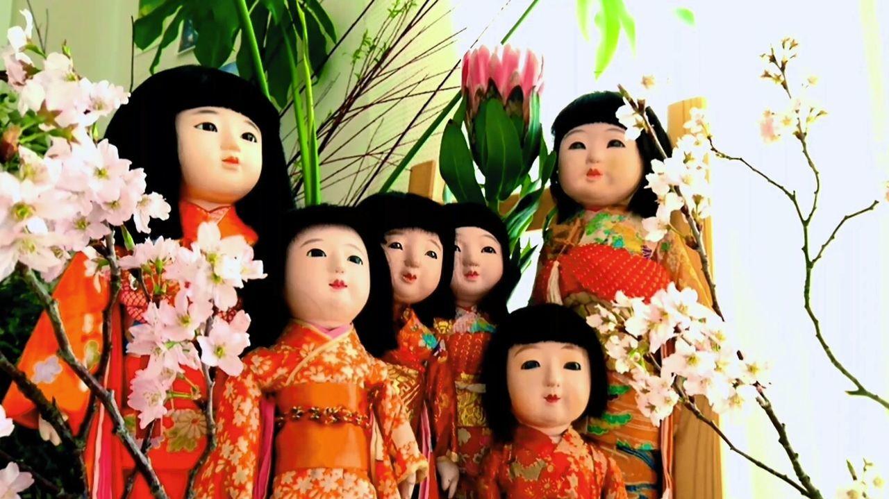 今では大家族 市松人形 日本人形 Japanesedoll Ichimatsu