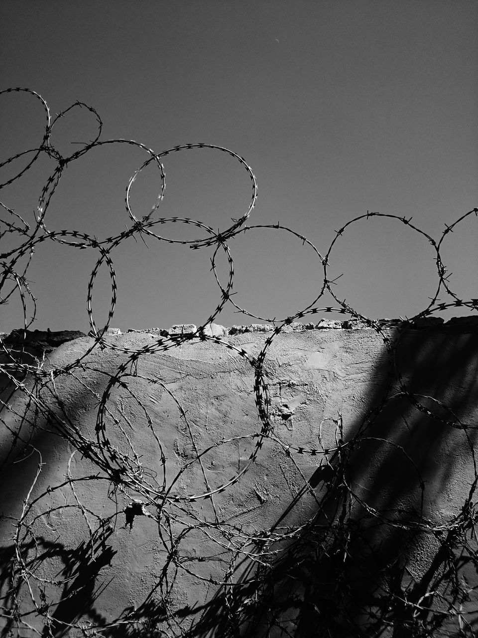 protection, safety, security, razor wire, barbed wire, outdoors, no people, day, sky, nature, clear sky