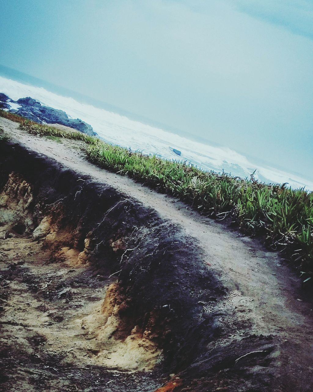 tranquil scene, nature, tranquility, scenics, beauty in nature, sea, water, no people, day, outdoors, beach, landscape, sky, grass, horizon over water, wave, sand, growth