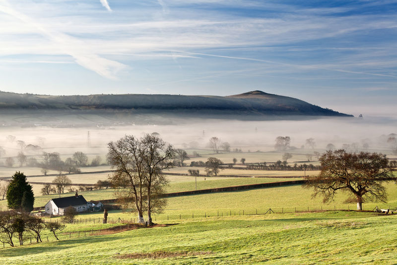 Agriculture Bare Tree Beauty In Nature Crook Peak Day Field Grass Landscape Misty Morning Mountain Nature No People Outdoors Rural Scene Scenics Sky Somerset Tranquil Scene Tranquility Tree Wint Hill