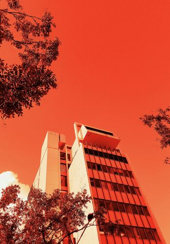Red Architecture Built Structure Popular Perspective Shapes And Forms EyeEm Ready   Still Life Color Palette Minimalism Flags In The Wind  City View  Tree Building San Juan PR Colorsplash Center Of Attention Rule Of Thirds