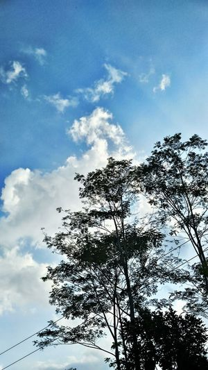 Good Morning HappySaturday Relax Makemehappy Today Clouds Sky Have A Nice Day Morning INDONESIA Nature Eyeemgallery Photooftheday Eyeemnature EyeEmtoday Lovely