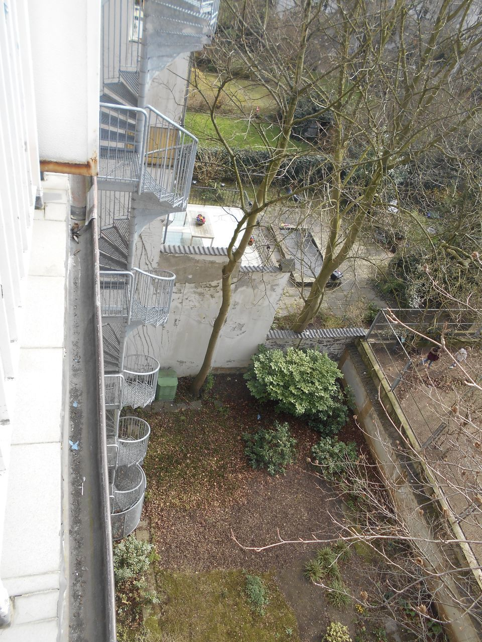 architecture, day, no people, building exterior, high angle view, outdoors, built structure, growth, plant, tree, nature, close-up