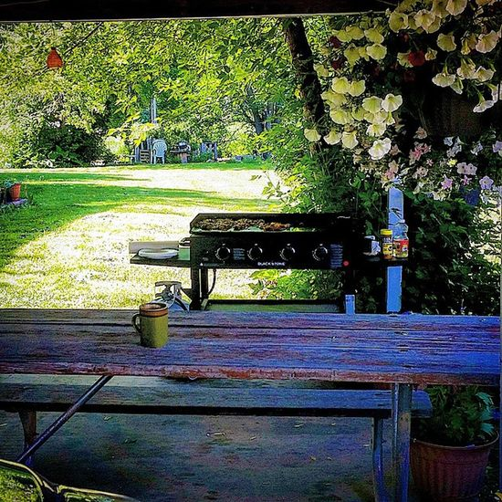 Spending this beautiful Sunday morning in the backyard, drinking coffee, breakfast on the griddle and being grateful. This is a great morning meditation. Grateful Sunday SundayMornings Johnnylopezthephotographer loganutahphotographer lifeisgood meditation