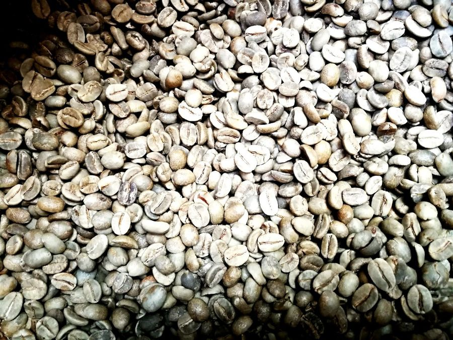 Abundance Large Group Of Objects Full Frame Backgrounds Pebble No People Nature Day Outdoors Textured  Pebble Beach Close-up Coffee Roasting Business Finance And Industry Coffee Roasting House Factory Green Beans,
