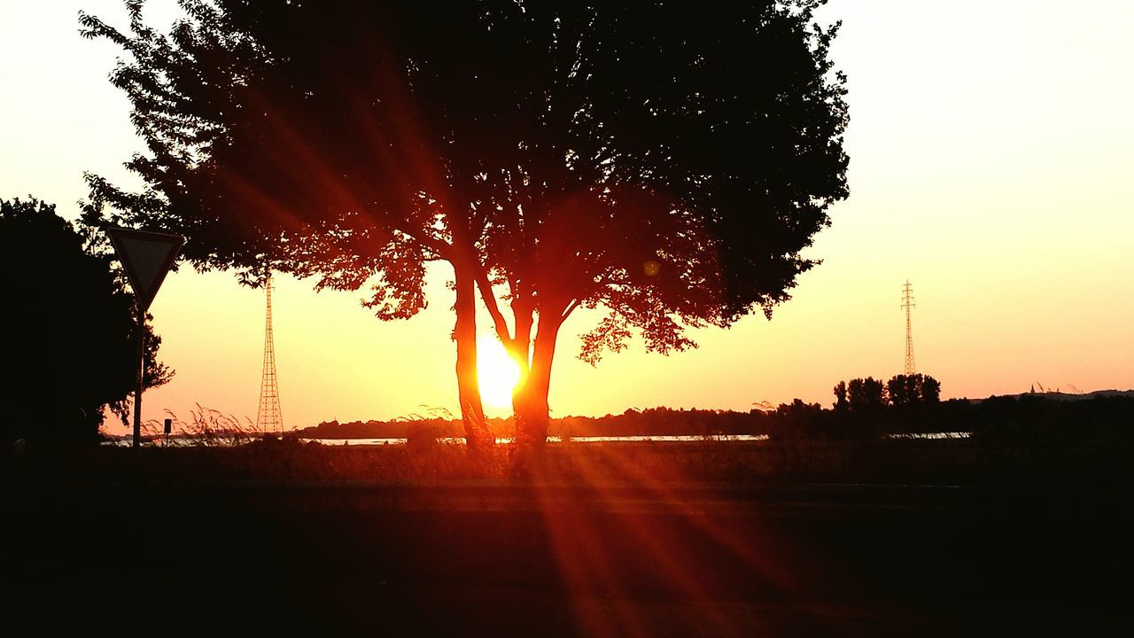 sunset, tree, silhouette, orange color, sky, nature, sun, no people, growth, scenics, road, outdoors, beauty in nature, day