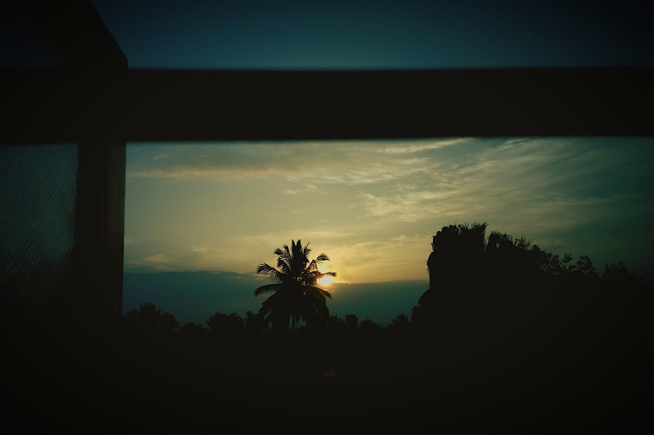 Morning sunrise through my windows....