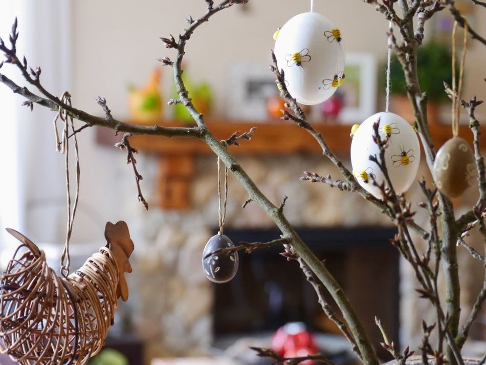 Wish all a HAPPY EASTER 🌸🐇🐣🌸 and those who don't celebrate Easter, a wonderful Spring weekend! Decoration Easter Ready Easter Traditions Eye4photography  Focus On Foreground No People Tadaa Community
