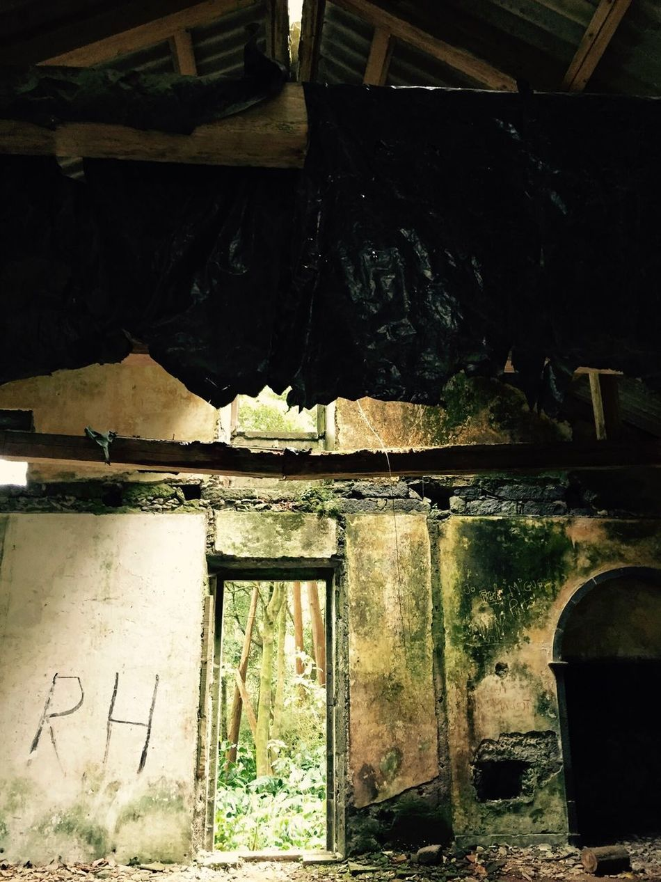 Abondoned Buildings Azores Portugal Forest Indoors  No People Architecture Low Angle View Built Structure Day Close-up