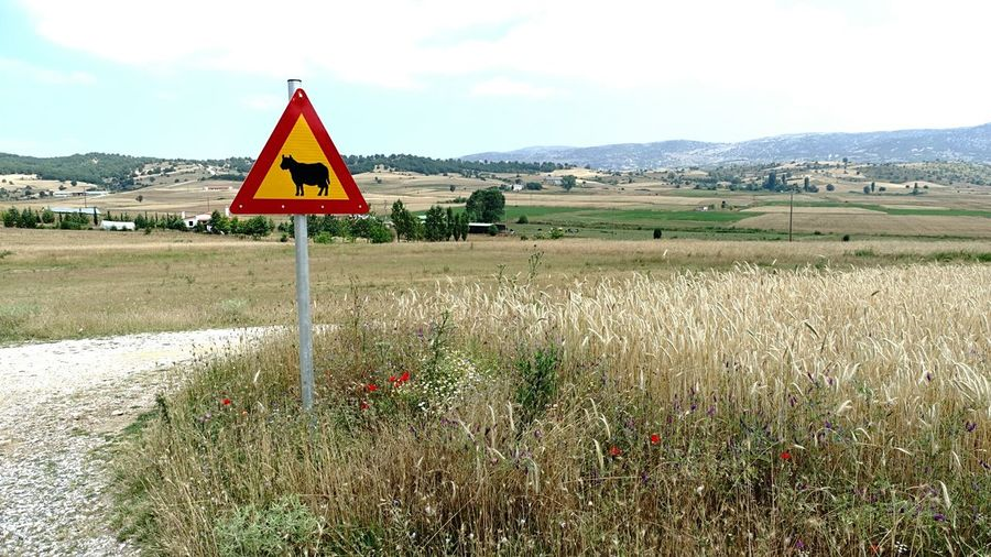 Milkiway Just Think Around The Corner Landscape Farsight Farm Life Rule Of Thirds Juicy Flower Meadow Triangle Roadsign Thinking About This Cow Muuh! Nice Day for Agriculture 100% Biological