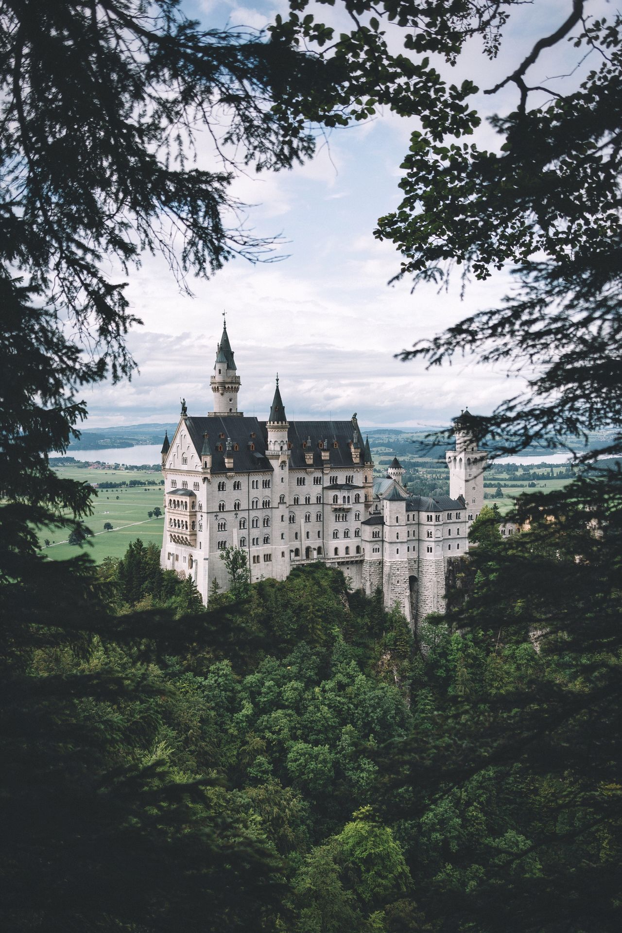 Framed by nature Travel Neuschwanstein Germany Tree Building Exterior Architecture Built Structure Sky Growth Outdoors No People Travel Destinations Branch Nature Low Angle View Day