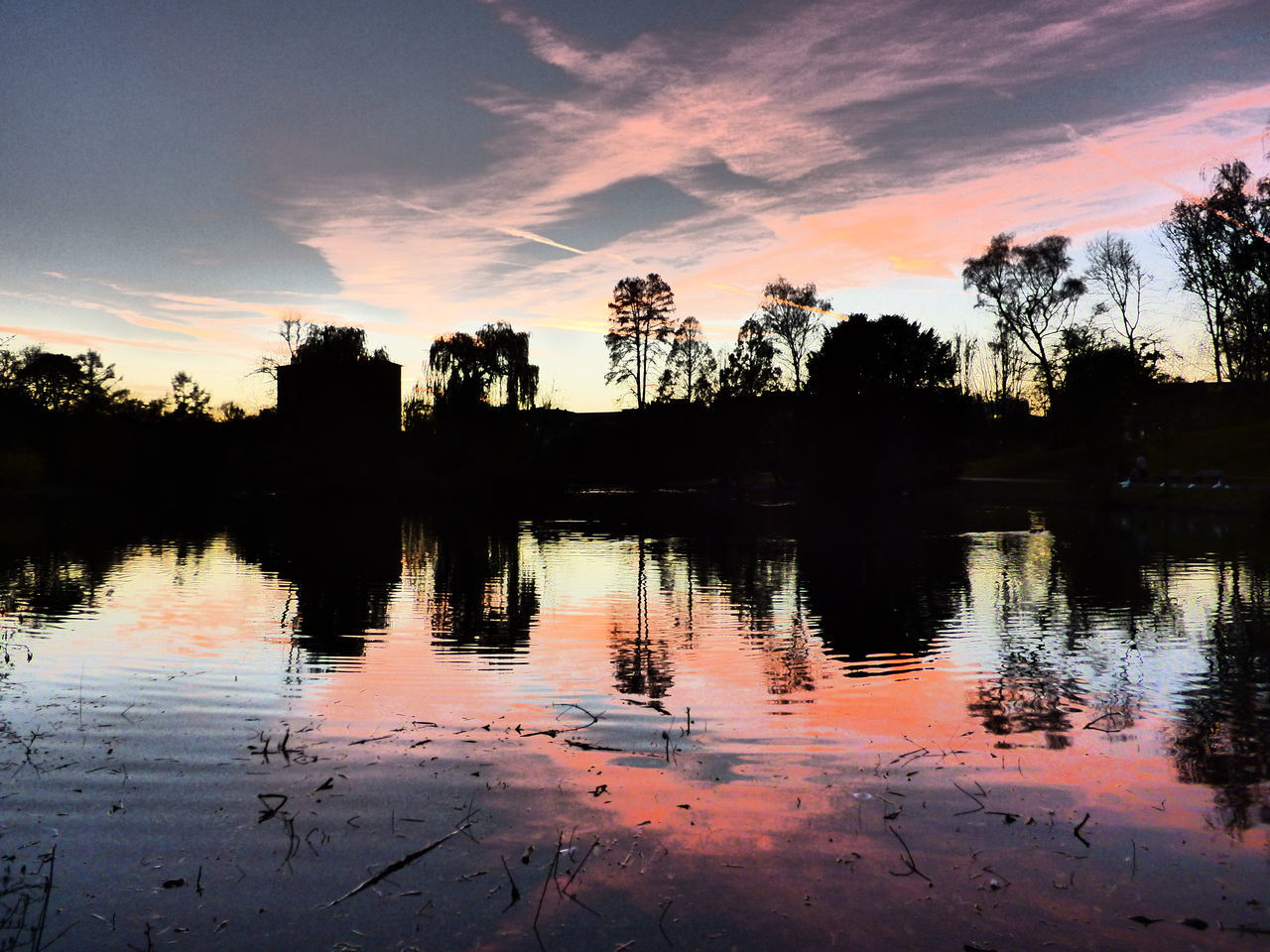 sunset, reflection, tree, sky, silhouette, water, nature, lake, cloud - sky, tranquility, beauty in nature, scenics, tranquil scene, outdoors, no people, growth, day