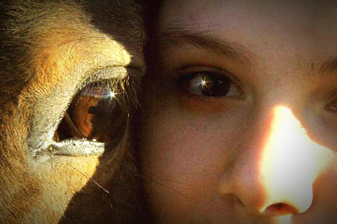 Horses Eyes Human Body Part Close-up Looking At Camera Human Eye Together Bestfriend Horses Are My Life Lost In Myself Children Photography Horse Horse Photography  Random Acts Of Photography Real People Horselife Horsehead