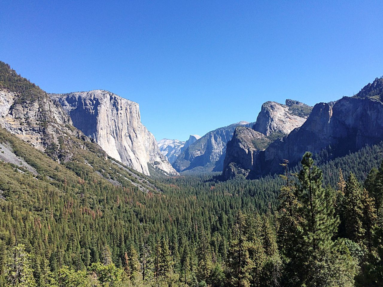 Bear-eye view of the Yosemite Valley Mountain Blue Clear Sky Nature Beauty In Nature Mountain Range Scenics Tranquility No People Sky Landscape Outdoors Day Yosemite National Park