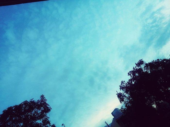 Mesmerising Skies