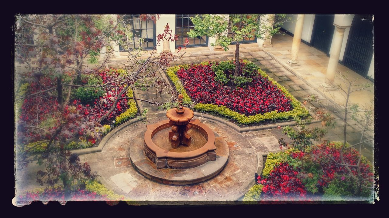 Garden Bogotá Getting Inspired Peace And Quiet Enjoying Life Relaxing Oasis In The City Multi Colored Getting Creative Tranquility