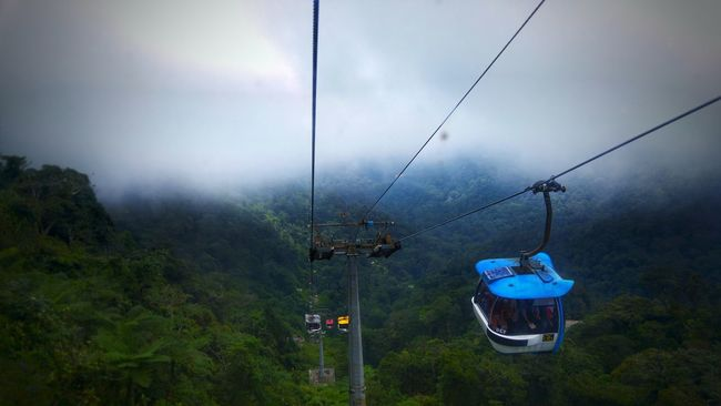 Cable Car Cloud - Sky Nature Hanging Day Storm Cloud Tree Outdoors Genting Highlands Wildlife & Nature