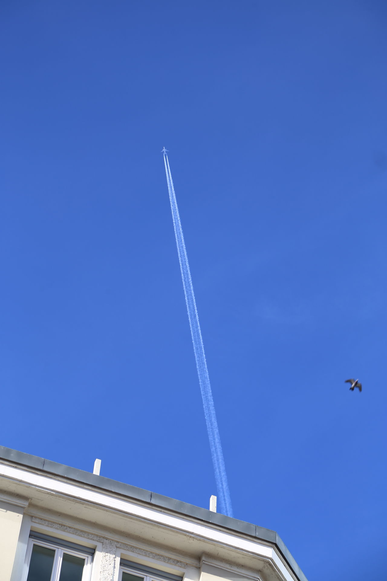 Airplane Blue Clear Sky Contrail Day High Above House Roof Low Angle View No People Outdoors Sky Summer Vapor Trail
