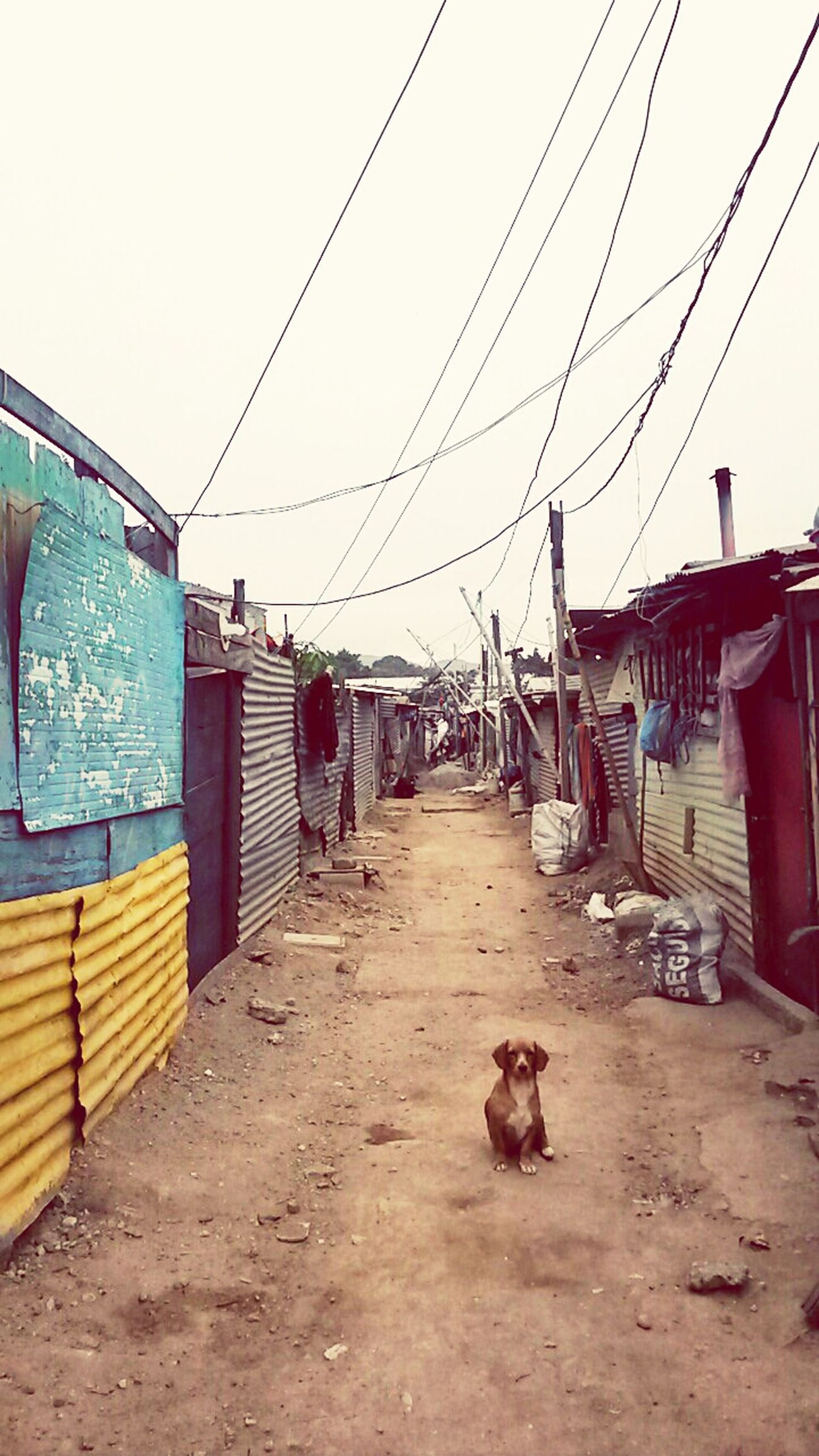 EL basurero de la ciudad de Guatemala un lugar donde viven muchas personas que se ganan la vida reciclando lo que encuentran cada día. Street Photography Photography TheRealGuatemala Urban