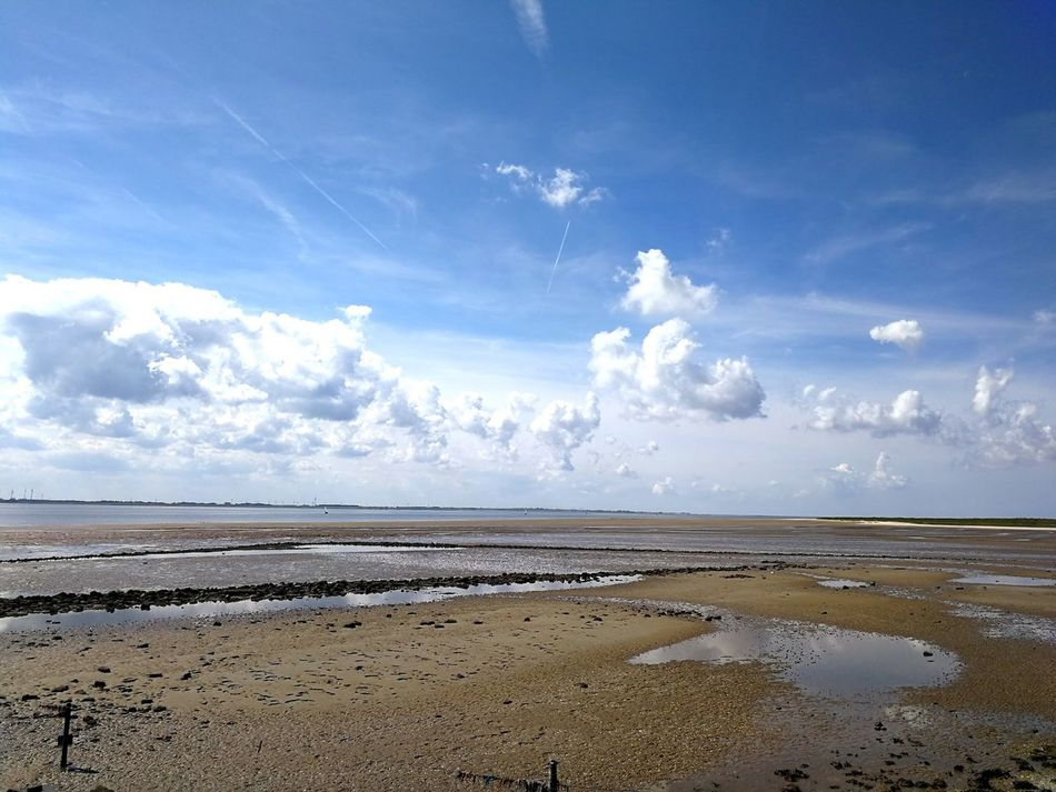 Weite Water Cloud - Sky Sky Tranquility Beach Landscape Beauty In Nature Blue Low Tide Travel Destinations Horizon Over Water Scenics Sand Sea Northsea Nordsee... Langeoog Nordsee Feeling🐚🌾 Wolkenspiel Blue Sky And Clouds Blue Sky White Clouds Ebbe Und Flut Tides