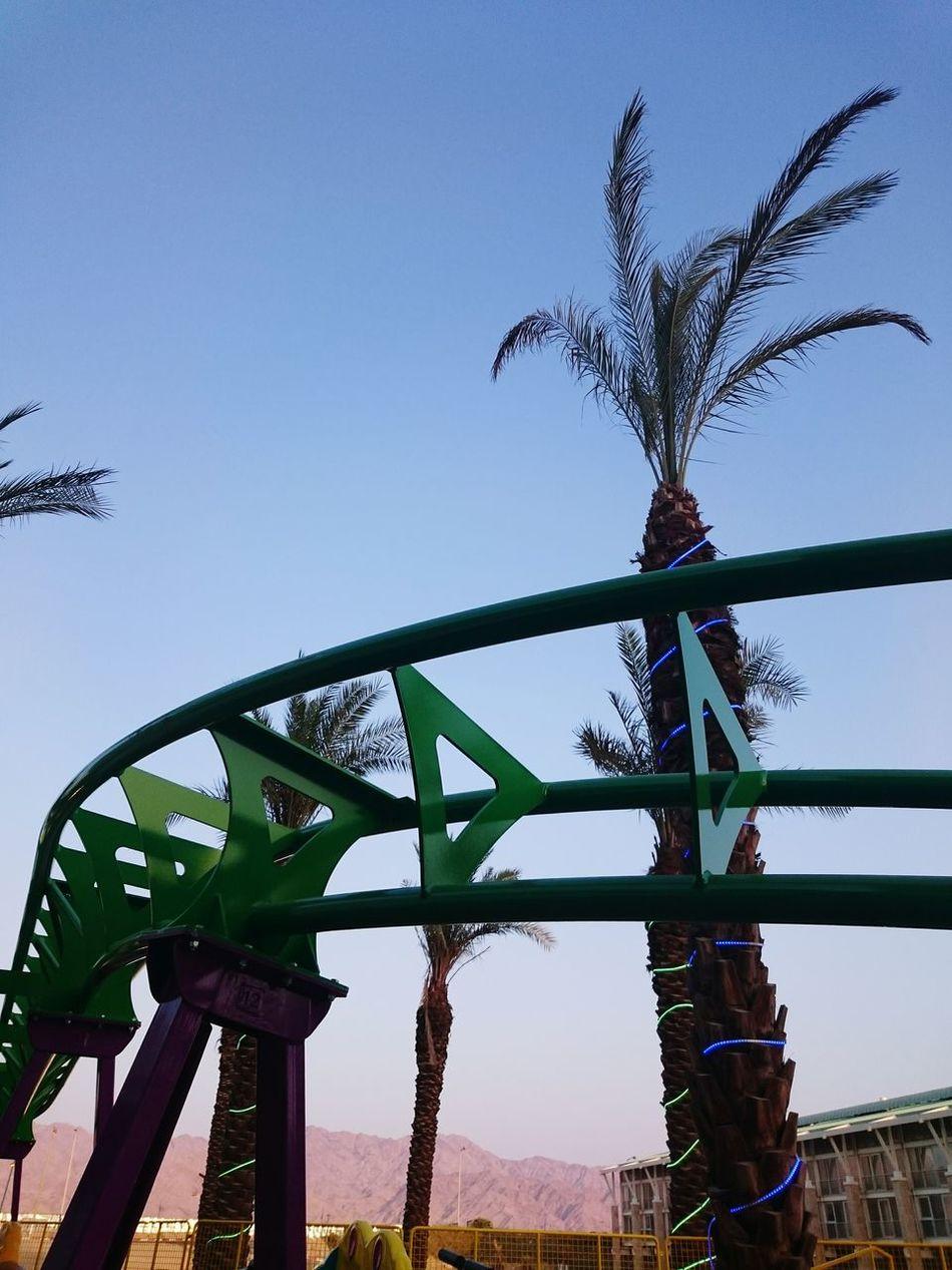 Beautiful stock photos of roller coaster, Amusement Park Ride, Day, Growth, Illuminated