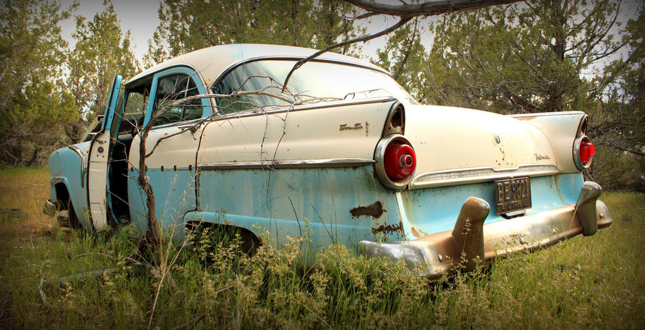 abandoned, damaged, transportation, obsolete, car, mode of transport, day, land vehicle, no people, old-fashioned, rusty, stationary, outdoors, tree, grass, nature