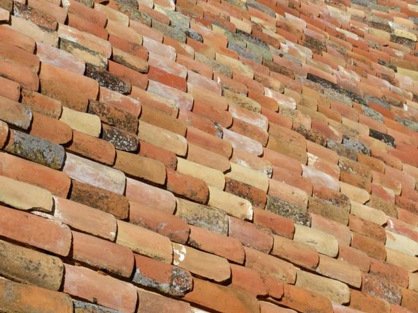 Pattern Backgrounds Full Frame Outdoors No People Day Nature Roof Tile Rooftop Earthy Colors