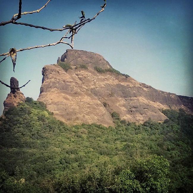 Dhak Bahiri Trekking in Maharashtra Sahanyadri Amazing Experience