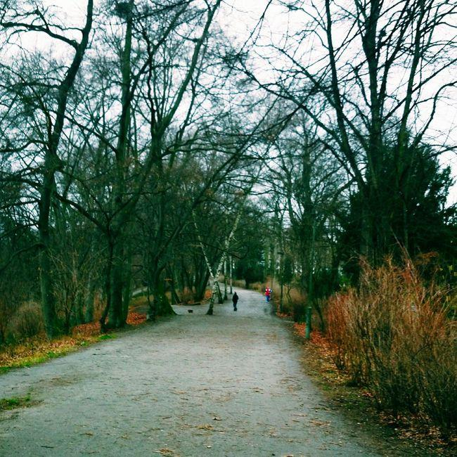 Germany Berlin Fennsee