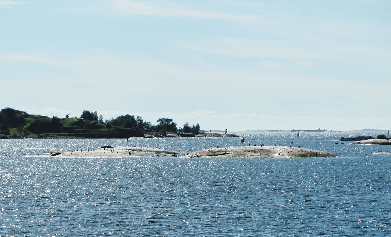 Skerries Rocky Islands Glacial Rocks Seabirds Seagulls Gulf Of Finland Helsinki Sea And Sky Sea Summer Sunshine Colour Of Life