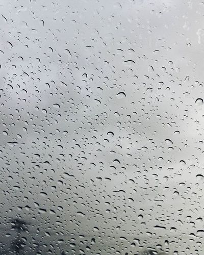 Vscocam VSCO RainyDay