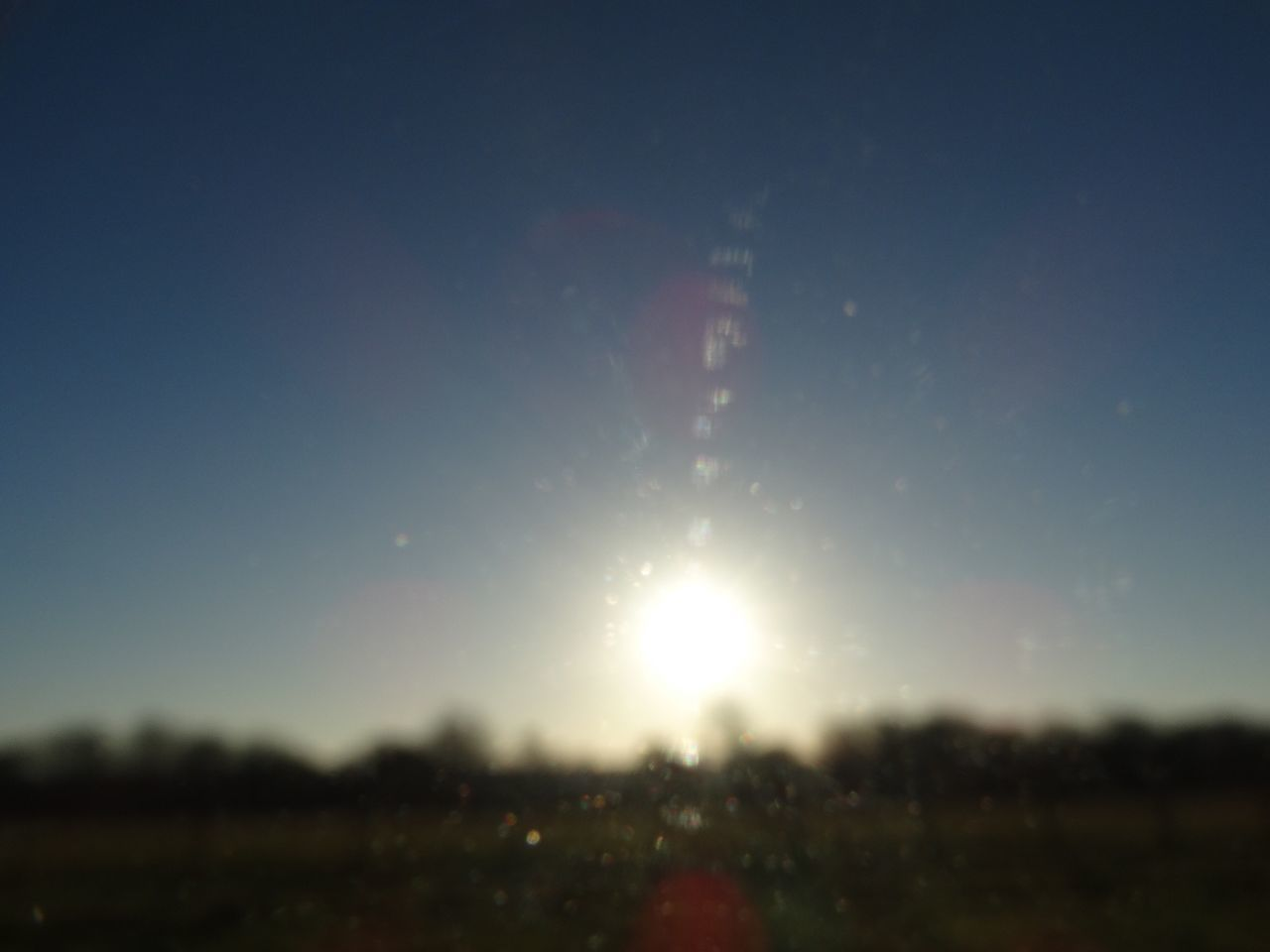 Sun glare. Nature Sun Sunlight Tranquility Sky Tranquil Scene Sunbeam Outdoors Beauty In Nature Growth No People Scenics Sunset Day Blur Sun Glare Light Backgrounds Selective Focus Sunrise Sky And Clouds
