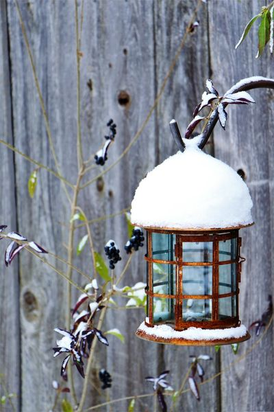 rustic hanging lantern Winter Cold Temperature Outdoors Snow Day Close-up Beauty In Nature Outside Cold Lantern Decoration Yard Decorations Yard Decor Birdhouse Art EyeEmNewHere EyeEmBestPics EyeEm Best Shots EyeEm EyeEm Gallery Antique Rustic Bronze Rusted Rusted Metal