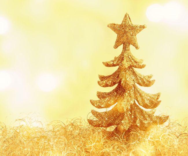 Little christmas tree Christmas Tree Gold Christmas Decorations Christmastime Weihnachten Weihnachtsbaum Weihnachtskarte Copy Space Xmas Xmas Decorations Xmas Tree Cute Close-up Close Up