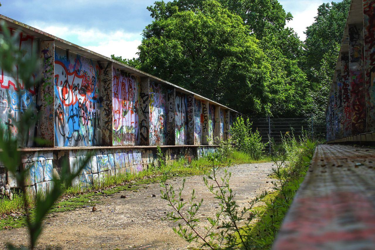 architecture, bridge - man made structure, built structure, tree, graffiti, outdoors, railing, day, building exterior, sky, growth, footbridge, bridge, no people, city, nature