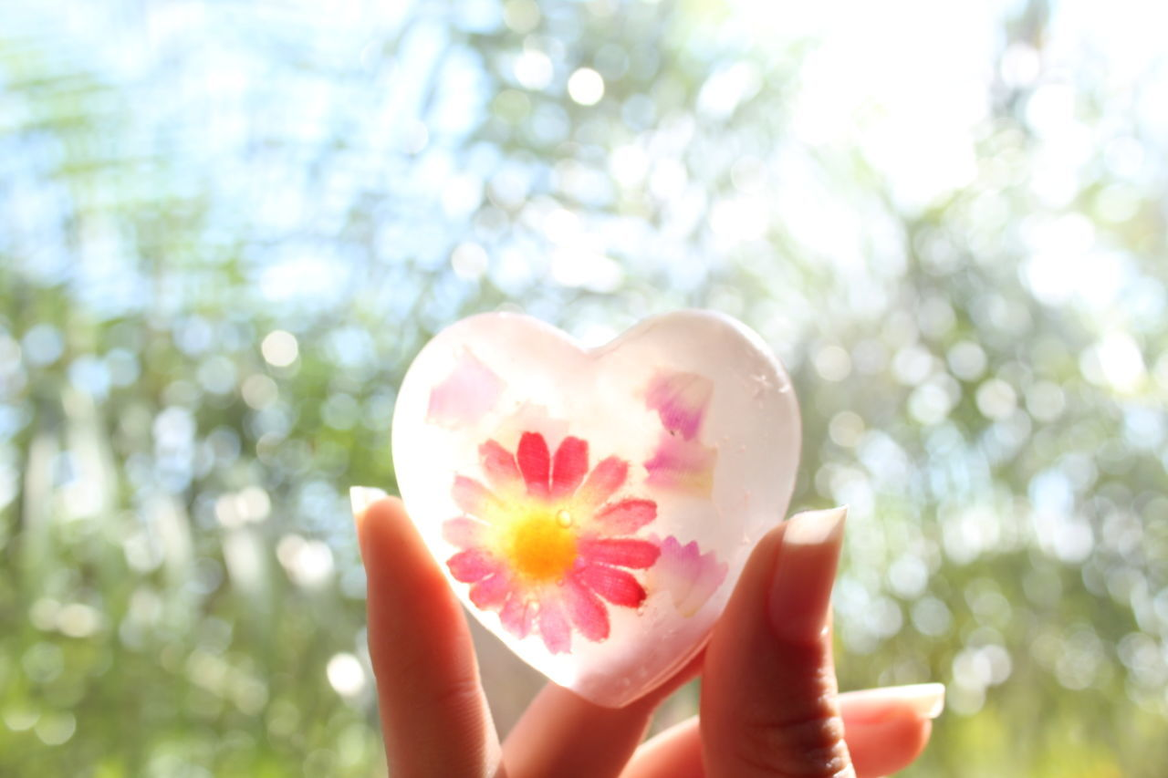 Human Hand Holding Heart Shape Nature Human Body Part Close-up Flower Fragility Handmade Soap Creativity Pink Color Outdoors Summer One Person Freshness Healthy Eating Women Day People One Woman Only Beauty In Nature Sky Millennial Pink