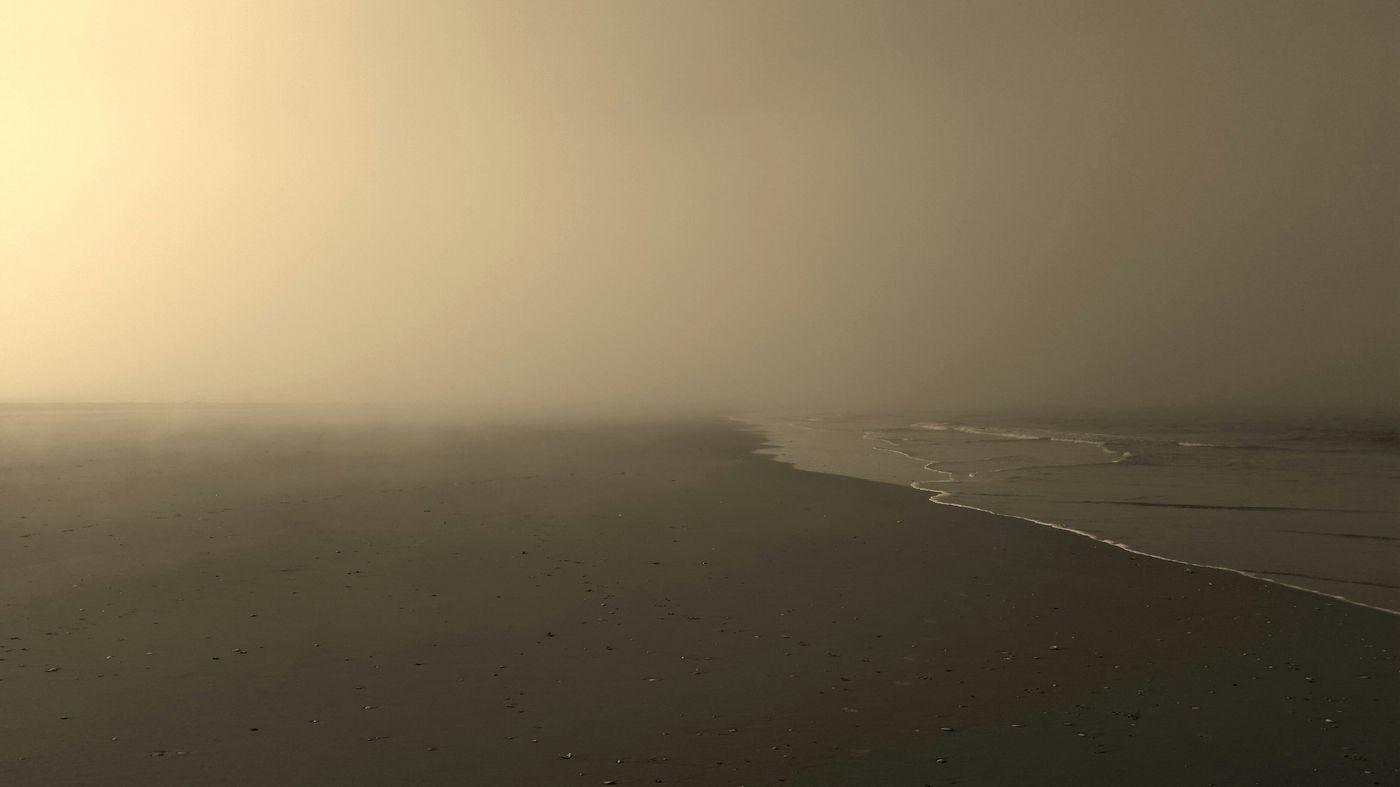 Lifting fog Sepia Life Is A Beach Monochrome Jersey Shore New Jersey EyeEm New Jersey Ocean City Nj  Sand Between My Toes My Beach