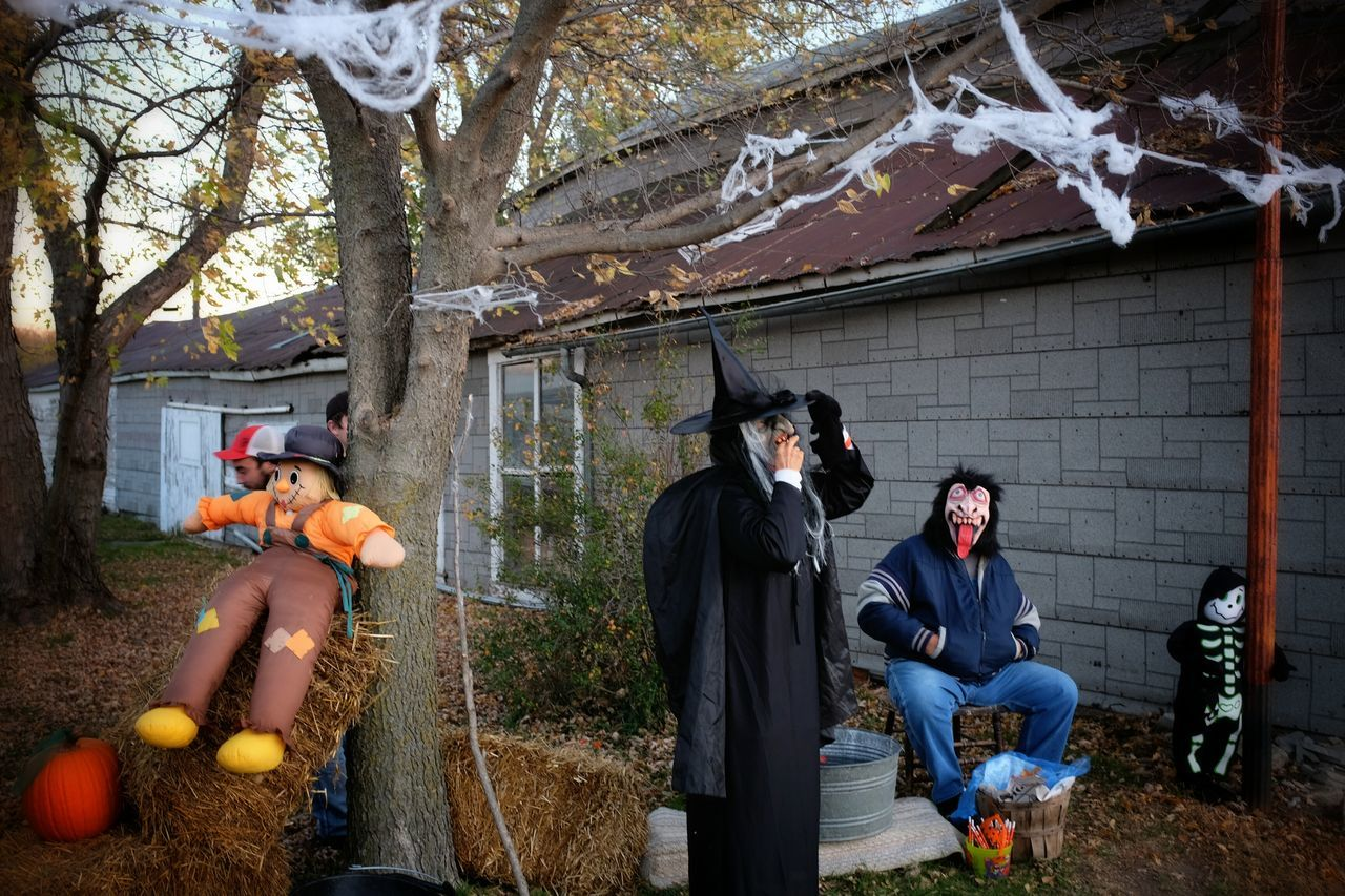 Beautiful stock photos of halloween, Backyard, Celebratory, Characters, Day