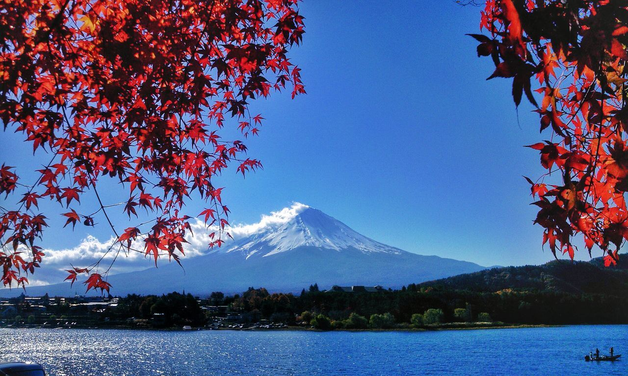 Amazing View 富士山 Aroundtheworldbylufthansa Aroundtheworldbyluftansa