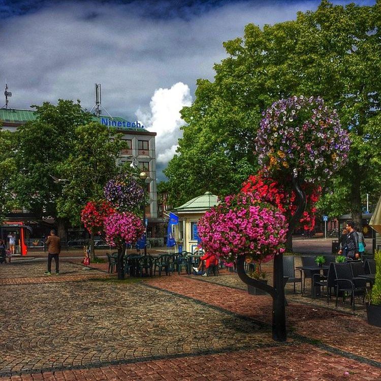 Karlstad V ärmland Torg Blommor stad sommar summer moln himmel träd tree torg internationalpictures