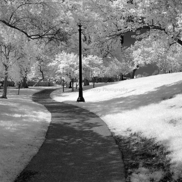 IMG_2399 by polishamericanphotographer on Flickr. Just follow this link to see and comment on this photo: https://flic.kr/p/sbr5D5 Cleaveland CLE  Cleveland ClevelandOhio1796 Ohio UniversityCircle WadeLagoon CuyahogaCounty EastSide Water Beautifulohio Blackandwhite Blacknwhite Infrared CanonG11 InfraredCanonG11 Canon TeamCanon Digitalcamera Digitalphotography Digitalphoto PointNShot PointandShot Powershot ThisisCLE