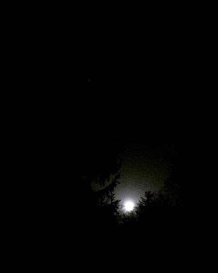 The Moon is yo friend