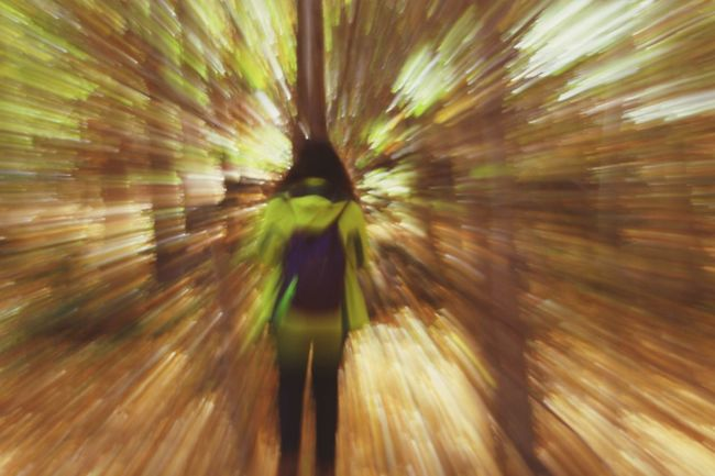 Zoom Zoom In Zoom Out Movement Photography Move Forest Forestwalk Green Color Brown Color
