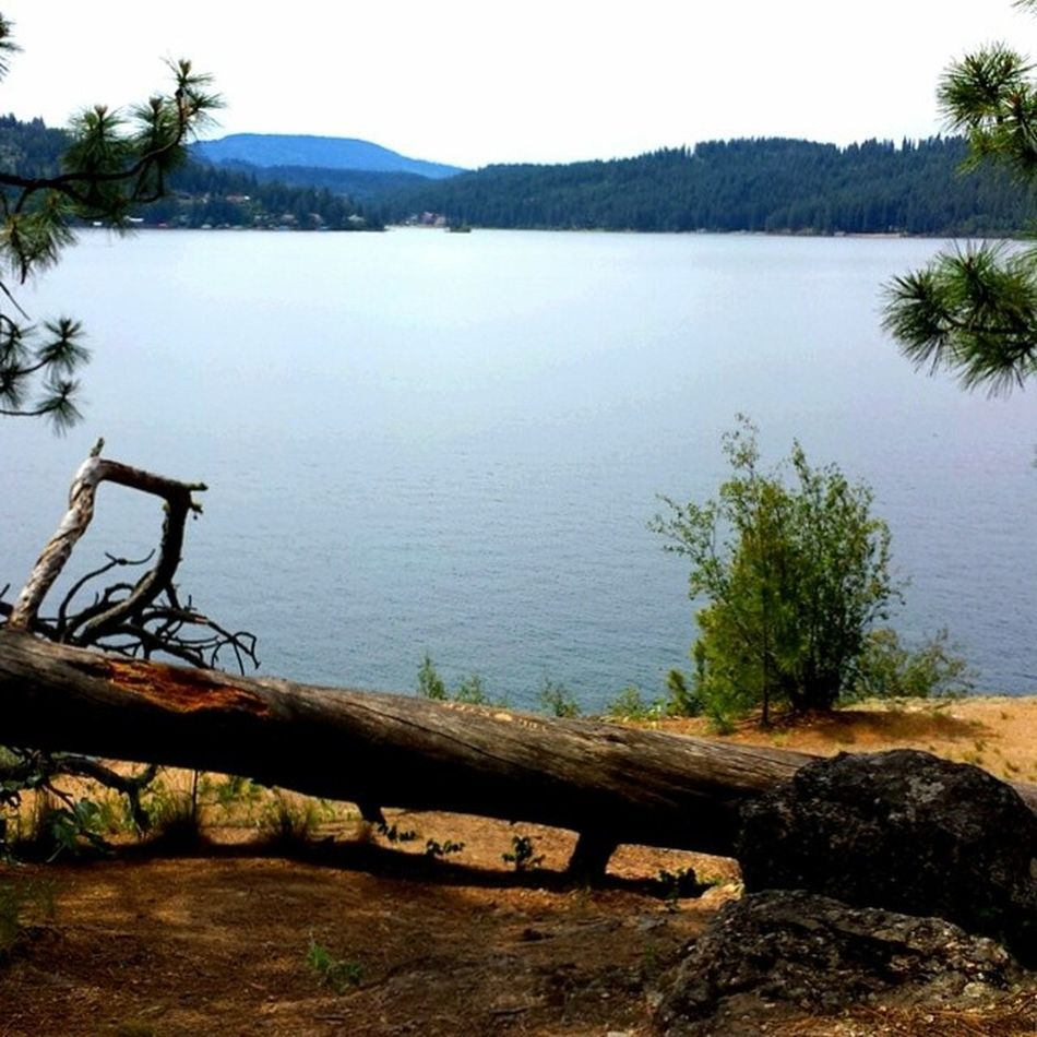 Pre Workout Run Trailrunning along Lakecda going to be a long day Shooting Onlocation tonite ToesInTheSandProductions