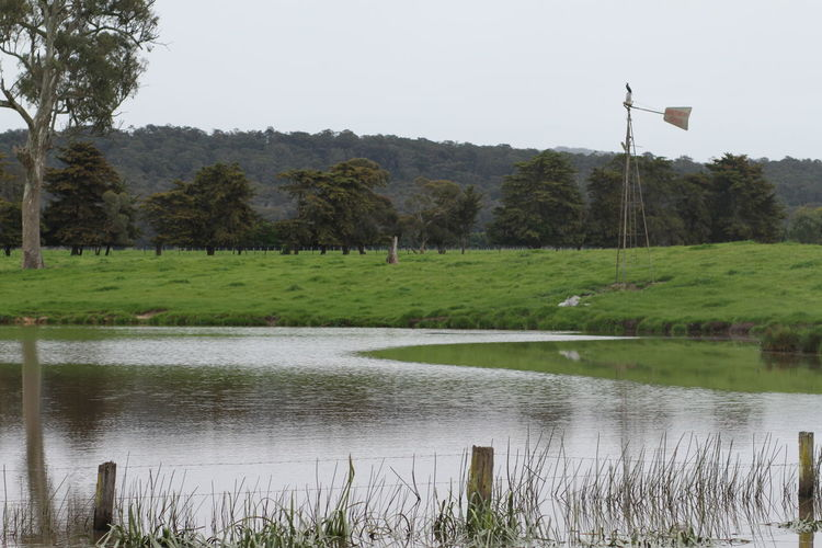 Australiana Lands Beauty In Field Green Color Majestic Non-urban Scene Outdoors Reflection Remote Tranquility