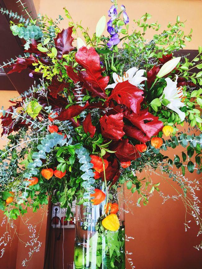 Flowers Flowers EyeEm Nature Lover