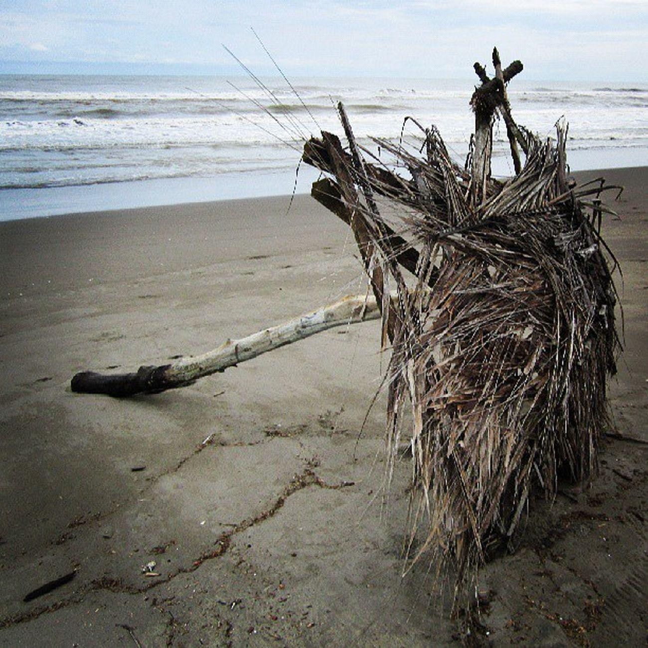 Norte Mexico Veracruz Casitas Playa mar costa esmeralda